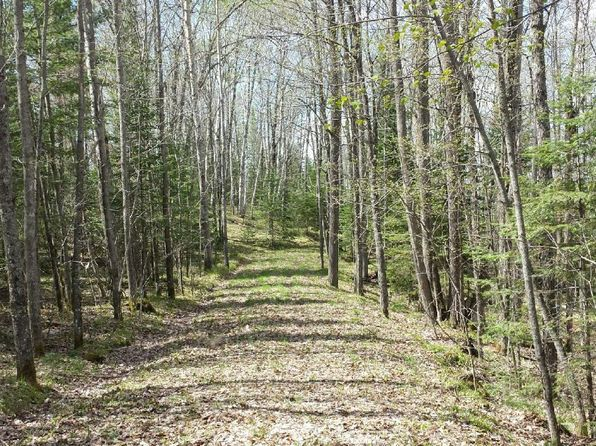 null bed null bath Vacant Land at  Firemens Point Rd Presque Isle, WI, 54557 is for sale at 190k - 1 of 5