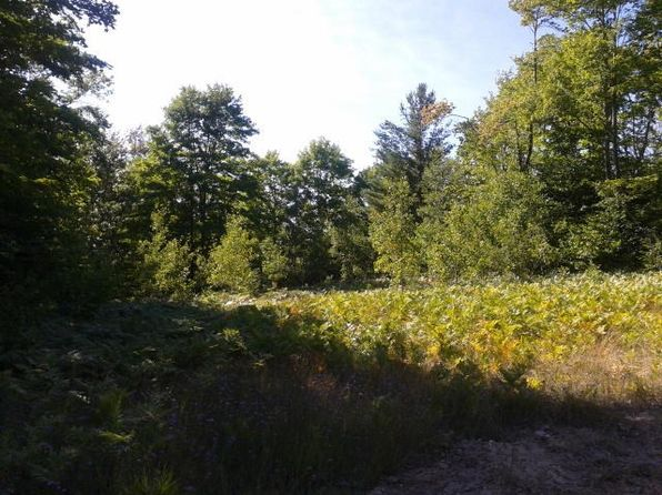 null bed null bath Vacant Land at  Adams Rd Indian River, MI, 49749 is for sale at 20k - 1 of 6