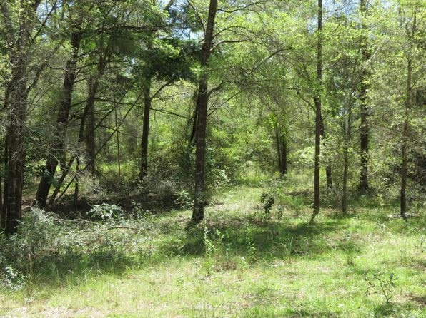 null bed null bath Vacant Land at 7351 NE 138th Ter Williston, FL, 32696 is for sale at 25k - 1 of 7