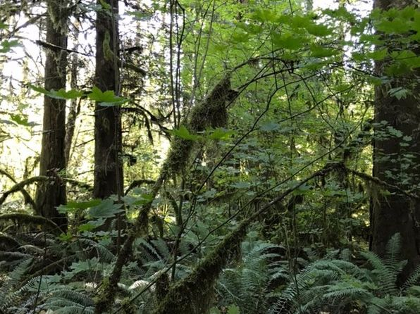 null bed null bath Vacant Land at 0 Hiawatha Rd Rhododendron, OR, 97049 is for sale at 100k - 1 of 5