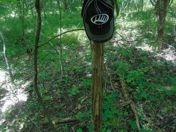 null bed null bath Vacant Land at  Revere Ln Waynesville, MO, 65583 is for sale at 224k - 1 of 48