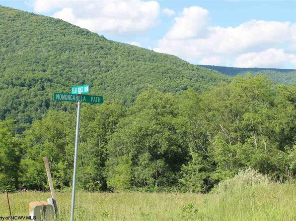 null bed null bath Vacant Land at 14FLAT Rock Run Canaan Crossing Rd Dry Fork, WV, 26263 is for sale at 40k - 1 of 7