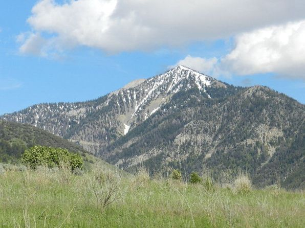 null bed null bath Vacant Land at LOT21BLK Buckhorn Ln Swan Valley, ID, 83428 is for sale at 88k - 1 of 7
