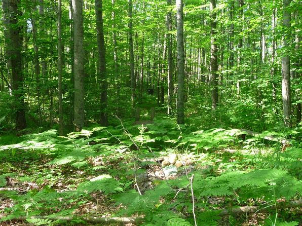 null bed null bath Vacant Land at  S Old State Rd Harrison, MI, 48625 is for sale at 75k - 1 of 46
