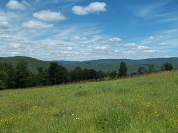 null bed null bath Vacant Land at  Hog Mt. Road Spur Fleischmanns, NY, 12430 is for sale at 50k - 1 of 5