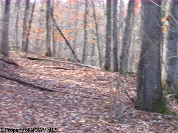 null bed null bath Vacant Land at 1100 Sheep Pen Run Williams River Rd Rd Upperglade, WV, 26206 is for sale at 100k - 1 of 8
