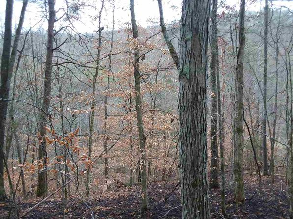 null bed null bath Vacant Land at 000 Cool Branch Rd Sneedville, TN, 37869 is for sale at 15k - 1 of 20