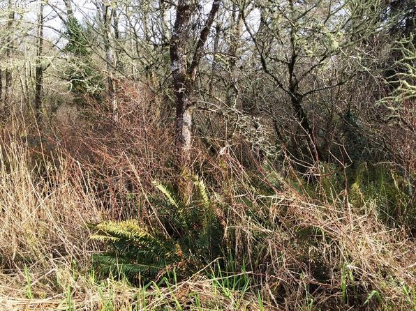 null bed null bath Vacant Land at 0000 Sandridge Rd Long Beach, WA, 98631 is for sale at 35k - 1 of 5
