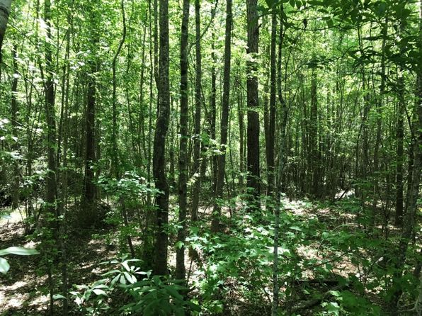 null bed null bath Vacant Land at  Cargile Rd Fayette, AL, 35555 is for sale at 60k - 1 of 10