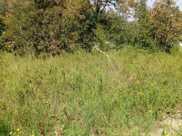null bed null bath Vacant Land at  Tbd SW 168th Ter Rd Ocala, FL, 34481 is for sale at 10k - google static map