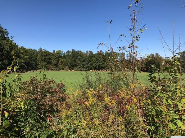 null bed null bath Vacant Land at 0 Brown Rd Durham, NY, 12422 is for sale at 35k - 1 of 3