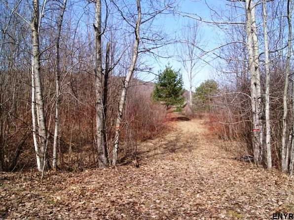 null bed null bath Vacant Land at 0 Congressman Dr Summit, NY, 12175 is for sale at 16k - 1 of 9