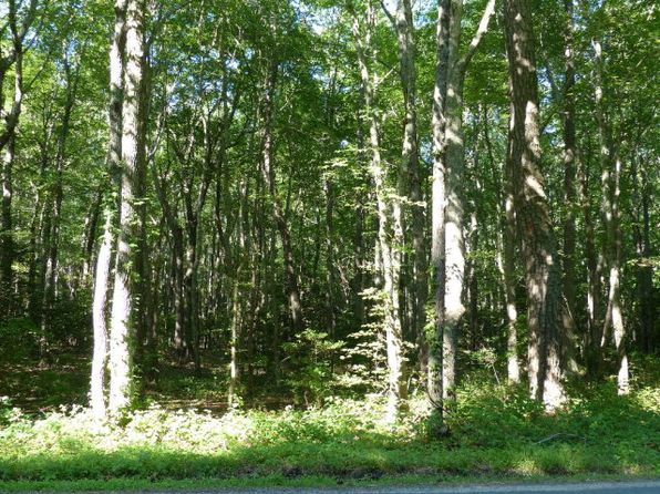 null bed null bath Vacant Land at  Lot 18 Saltworks Rd Jamesville, VA, 23398 is for sale at 5k - google static map