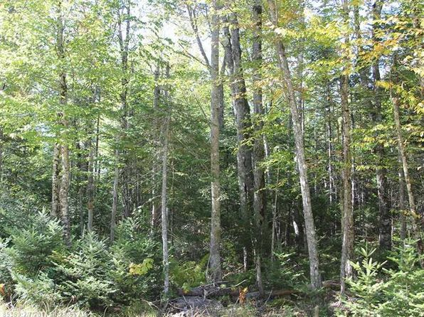 null bed null bath Vacant Land at S1 Carter Farm Ln Surry, ME, 04684 is for sale at 49k - 1 of 5