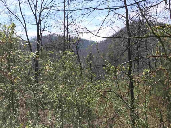null bed null bath Vacant Land at  Tract 1 Chapel Hollow Rd Del Rio, TN, 37727 is for sale at 12k - 1 of 12