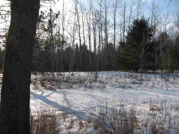 null bed null bath Vacant Land at 12867 Hwy 32/64 Mountain, WI, 54149 is for sale at 46k - 1 of 22