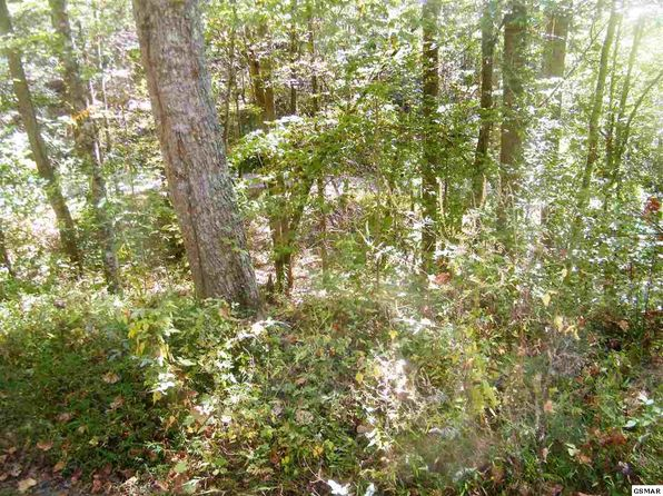 null bed null bath Vacant Land at  White Rock Way Cosby, TN, 37722 is for sale at 30k - 1 of 11