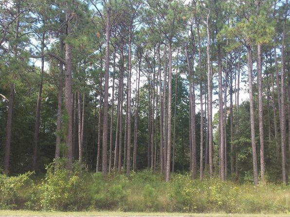 null bed null bath Vacant Land at 1953 N KERR AVE WILMINGTON, NC, 28405 is for sale at 35k - 1 of 2