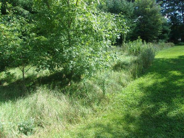 null bed null bath Vacant Land at E1881 Lake Shore Dr Iola, WI, 54945 is for sale at 32k - 1 of 4