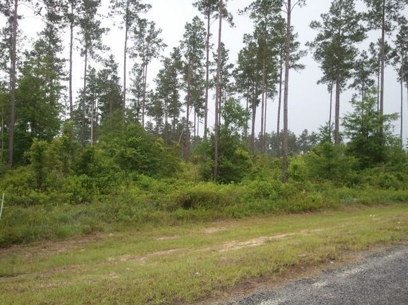 null bed null bath Vacant Land at 185 Mount Pleasant Rd Hortense, GA, 31543 is for sale at 23k - google static map