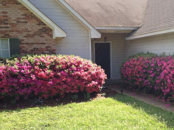 3 bed 2 bath Single Family at 321 Planters Grv Ridgeland, MS, 39157 is for sale at 127k - 1 of 5