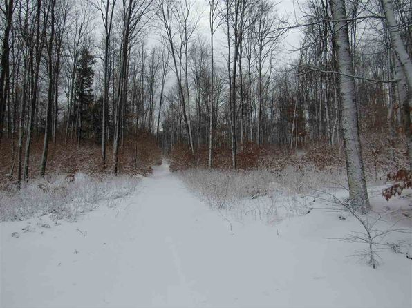 null bed null bath Vacant Land at  Tbd Ffr2766 Wetmore, MI, 49895 is for sale at 43k - 1 of 22