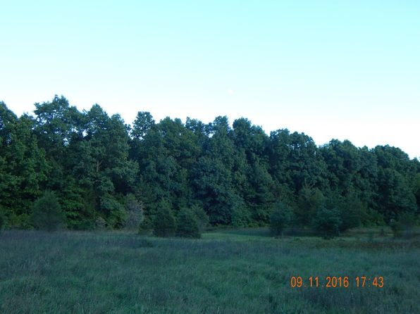 null bed null bath Vacant Land at  Blue Ridge Rd Napoleon, MI, 49234 is for sale at 165k - 1 of 47
