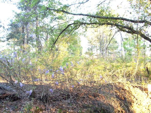 null bed null bath Vacant Land at  Lot 3 Sweetwater Ft. Gaines, GA, 31776 is for sale at 35k - google static map
