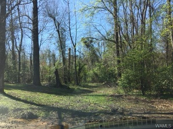 null bed null bath Vacant Land at 808 BEVERLY DR E NORTHPORT, AL, 35473 is for sale at 282k - google static map