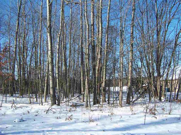 null bed null bath Vacant Land at  Maid Marian Roscommon, MI, 48653 is for sale at 20k - 1 of 2