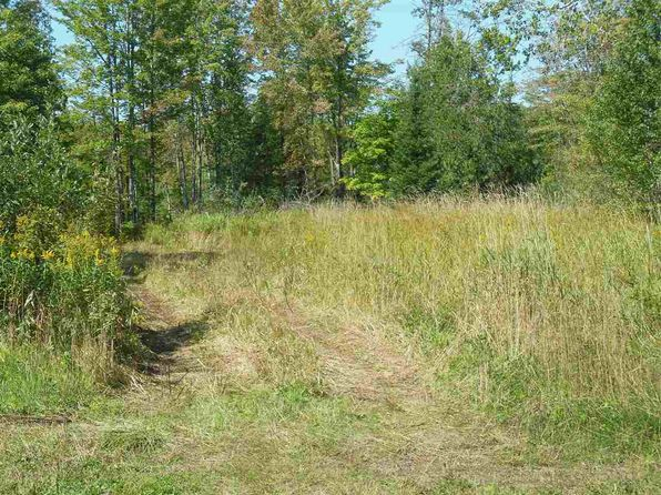 null bed null bath Vacant Land at 0 Hamar Rd Baraga, MI, 49908 is for sale at 40k - 1 of 10