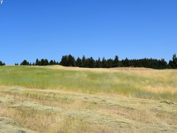 null bed null bath Vacant Land at  Yarrington Elgin, OR, 97827 is for sale at 165k - 1 of 13
