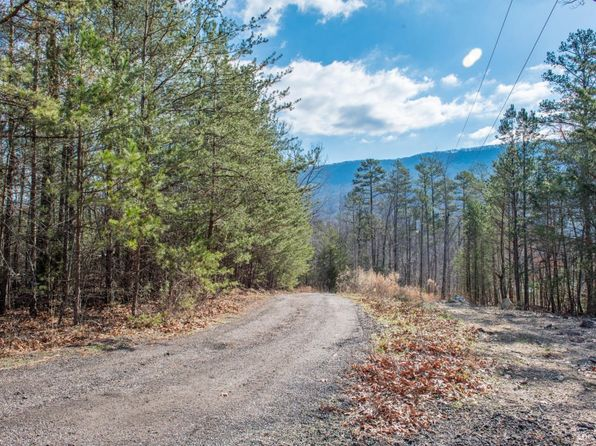 null bed null bath Vacant Land at  Miller Dr Trenton, GA, 30752 is for sale at 25k - 1 of 5