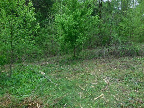 null bed null bath Vacant Land at 46.11 Ac Blackburn Frk Gainesboro, TN, 38562 is for sale at 109k - 1 of 17