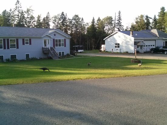 Limestone Maine Rooms For Rent