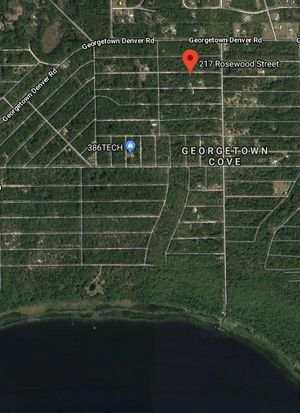 217 Rosewood St Georgetown Fl 32139 Zillow