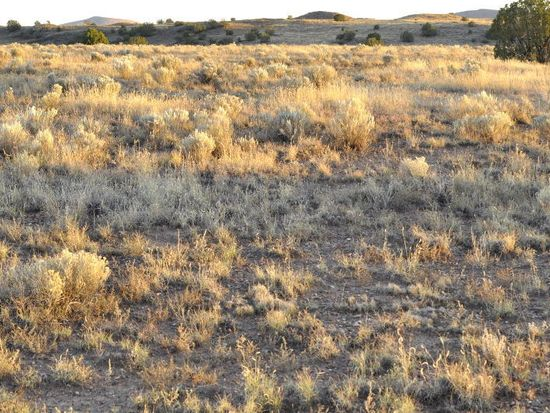 62 Ranch Dr Concho Valley AZ 85924