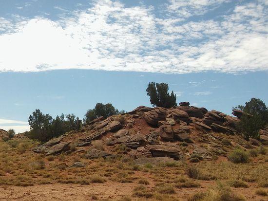 628 Hwy 180 Concho Arizona AZ 85924