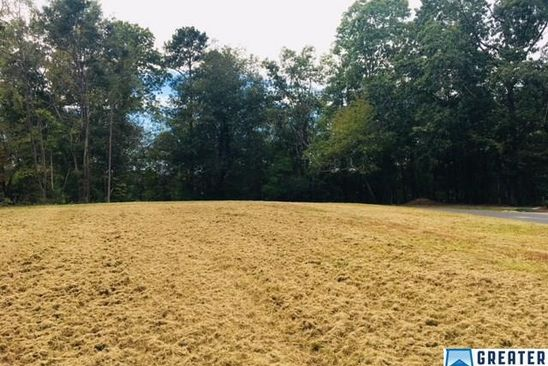 null bed null bath Vacant Land at  Briarwood Cir Oneonta, AL, 35121 is for sale at 24k - google static map