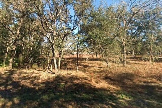 null bed null bath Vacant Land at 34001 Long Cir Webster, FL, 33597 is for sale at 45k - google static map
