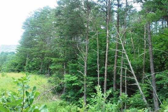 null bed null bath Vacant Land at 0 Half Acre of Rocks Rd Elliston, VA, 24087 is for sale at 45k - google static map