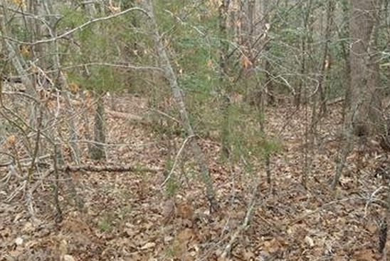 null bed null bath Vacant Land at 00 Willow Bank Rd Charles City Co., VA, 23030 is for sale at 25k - google static map