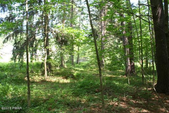 null bed null bath Vacant Land at  Peggy Runway Rd Beach Lake, PA, 18405 is for sale at 25k - google static map