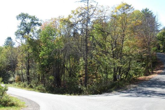 null bed null bath Vacant Land at 367 Page St/ Jim Hills Rd Lake Pleasant, NY, 12108 is for sale at 44k - google static map