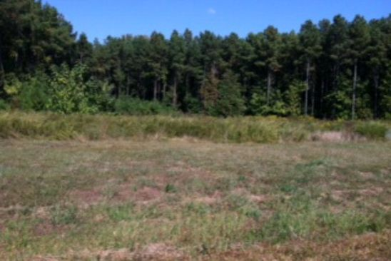 null bed null bath Vacant Land at 11 Irvington Farm Rd Irvington, VA, 22480 is for sale at 73k - google static map