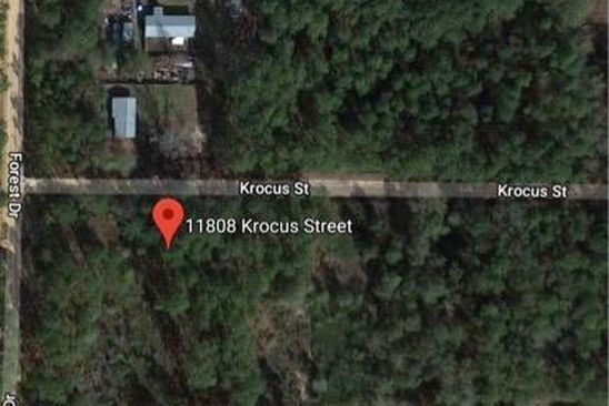 null bed null bath Vacant Land at 11808 KROCUS ST FOUNTAIN, FL, 32438 is for sale at 10k - google static map