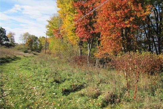 null bed null bath Vacant Land at 880 Frick Rd Leonard, MI, 48367 is for sale at 80k - google static map