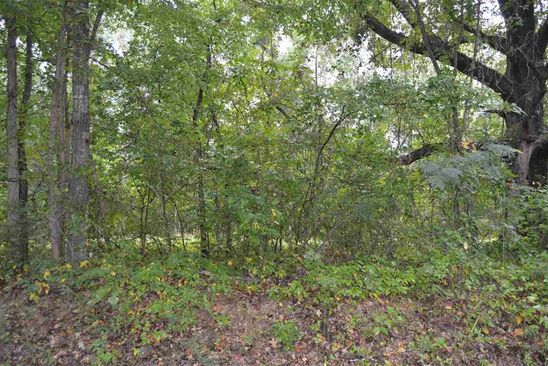 null bed null bath Vacant Land at  County Road 431 Trinity, AL, 35673 is for sale at 8k - google static map