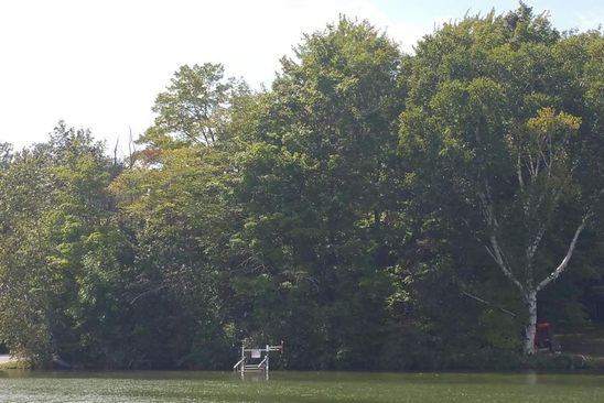 null bed null bath Vacant Land at NA Ellsworth Petoskey, MI, 49770 is for sale at 150k - google static map