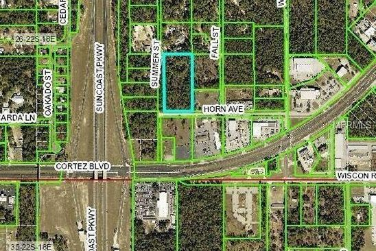 0 bed null bath Vacant Land at  Horn Ave Brooksville, FL, 34613 is for sale at 165k - google static map